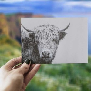 Aesthetic photo of cow print greeting card with out of focus Irish scenery blue sky and grass in the background